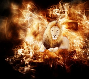 fire_flame_Fire_lion_Wallpaper_960x854_wallpaperhi.com