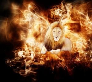 fire_flame_Fire_lion_Wallpaper_960x854_wallpaperhi.com